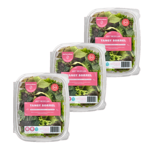 Just Mesclun - Tangy Sorrel Bundle (100g x 3)