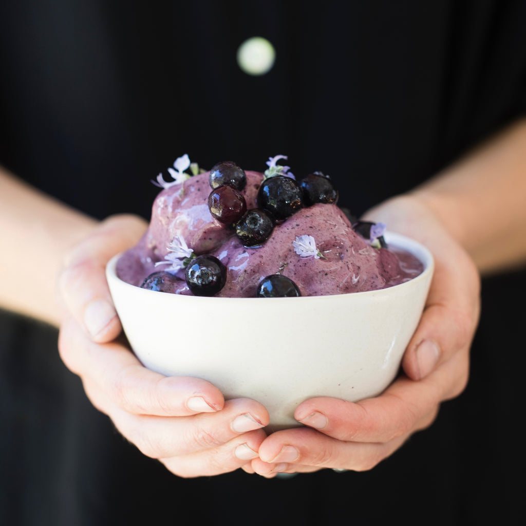 Blueberry & coconut frozen yoghurt