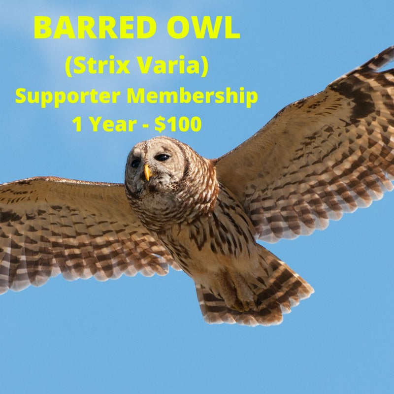 Barred Owl Supporter Membership