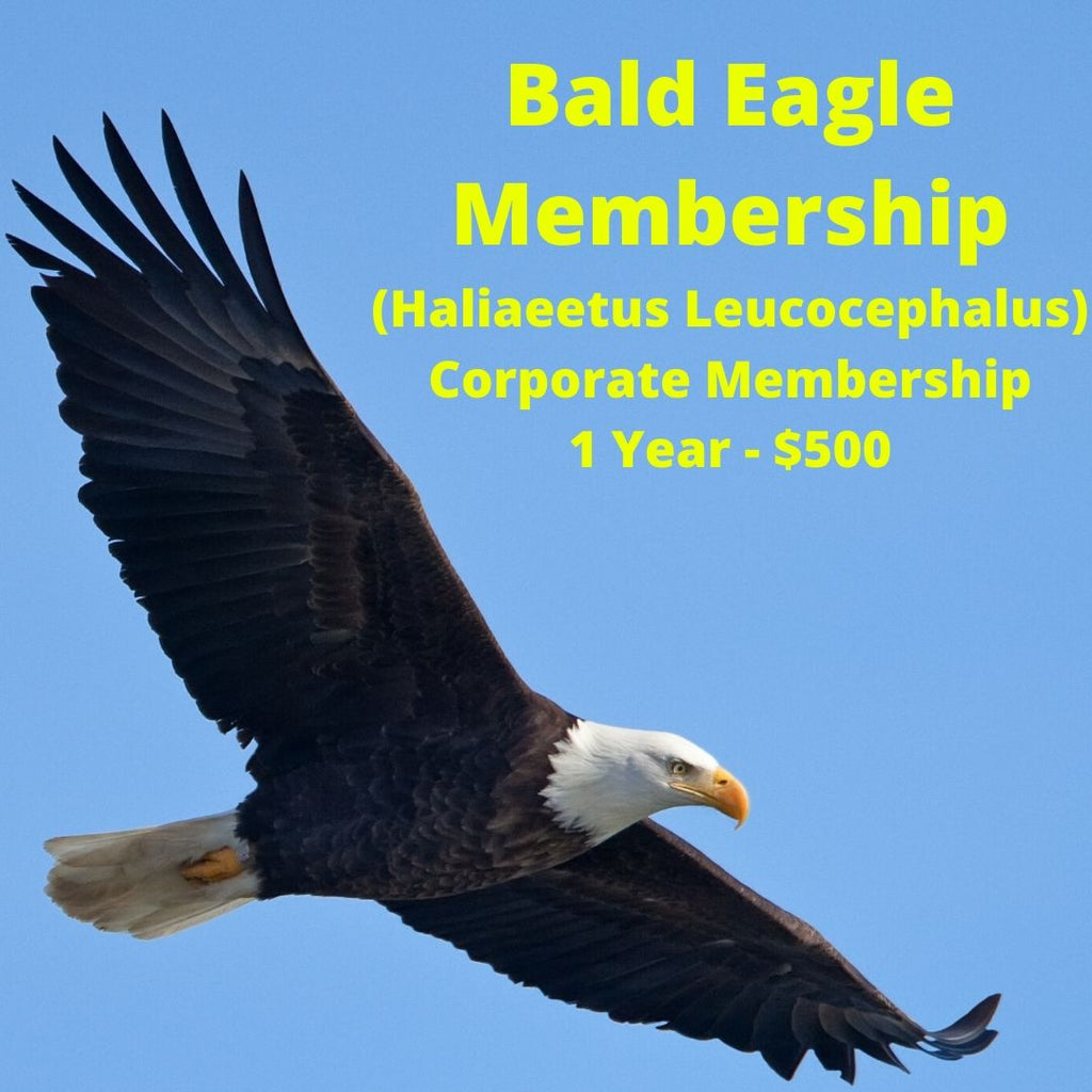 Bald Eagle Corporate Membership