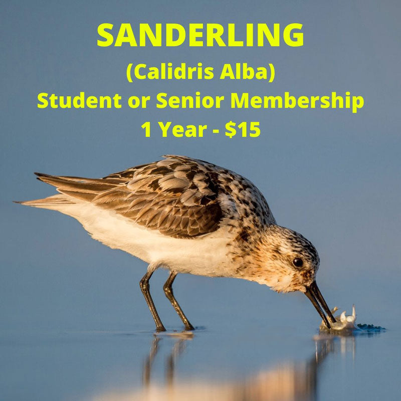 Sanderling Level Membership