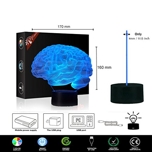 Brain 3D Illusion Halloween Decorations Lamp Night Light