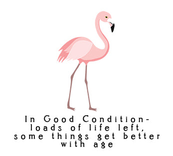 1 flamingo Condition.jpg