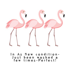 3 flamingos Condition.jpg