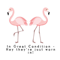 2 flamingos Condition.jpg