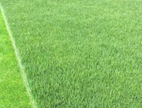 What factors affect the price of artificial turf?