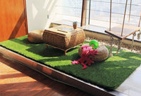 Artificial turf daily home use