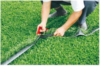 Characteristics and differences of Sports Grass and Leisure Grass
