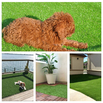 "GOLDEN MOON Artificial Grass for Dogs 0.8"" Pet Grass Puppy Potty Training Grass Pee Pad Fake Grass Mat for Garden"