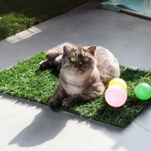 Pet Grass Mat Series PE Artificial Turf Antibacterial Pet - Golden Moon Garden