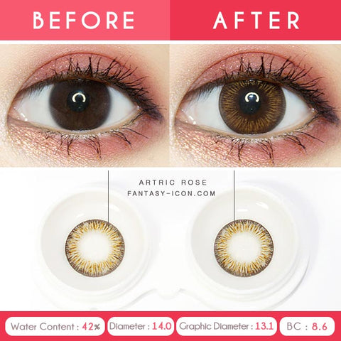 Rose Artric Brown 1 Day Colored Contacts-Eyes Detail
