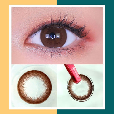 Toric Lens Brownie Brown Colored Contacts For Astigmatism eyes