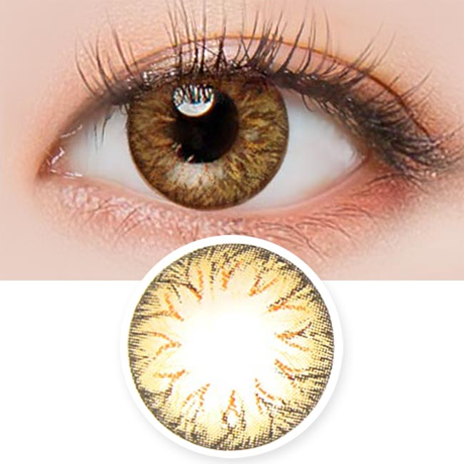 Toric Lens Cielo soony Brown Colored Contacts For Astigmatism