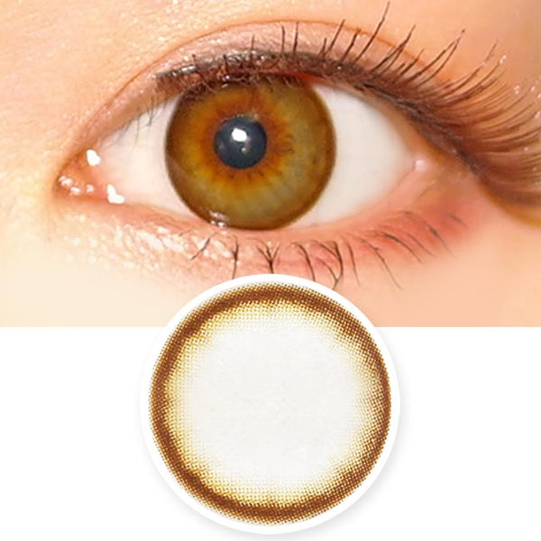Toric Lens Lottie Soa Chocolate Brown Colored Contacts For Astigmatism