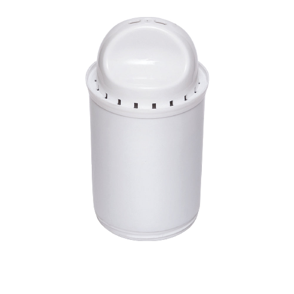 Replacement Filter for Ecosoft Dewberry Pitcher