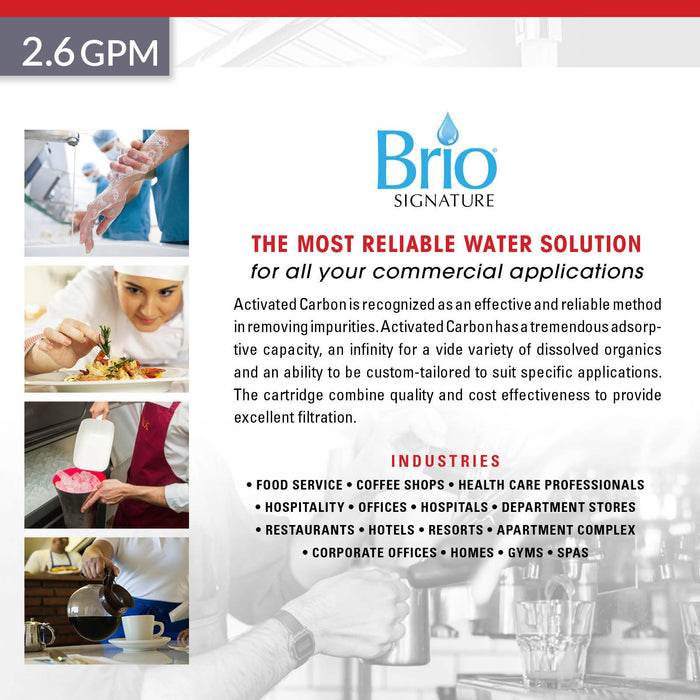 "Brio Signature 4.5"" X 20"" Gac Replacement Filter for Commercial RO System"