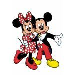 Disney Minnie-Mickey