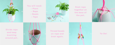 Refinery29 Plant Pot Tutorial
