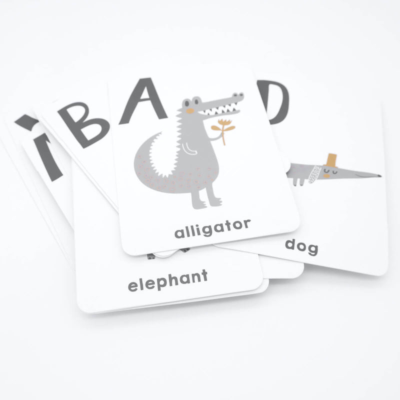Learn to Count & Alphabet Bundle