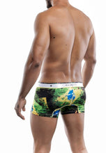 Load image into Gallery viewer, MaleBasics Hipster Trunk Brazil
