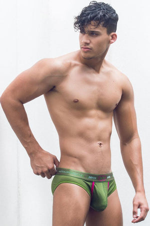 Aeolus Brief | Green Gale