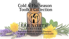 Load image into Gallery viewer, Cold & Flu Season Toolkit Collection