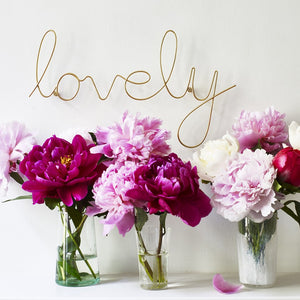 Bombay Duck 'Lovely' Wire Word Sign