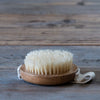 Yellow Gorse Exfoliating Body Brush