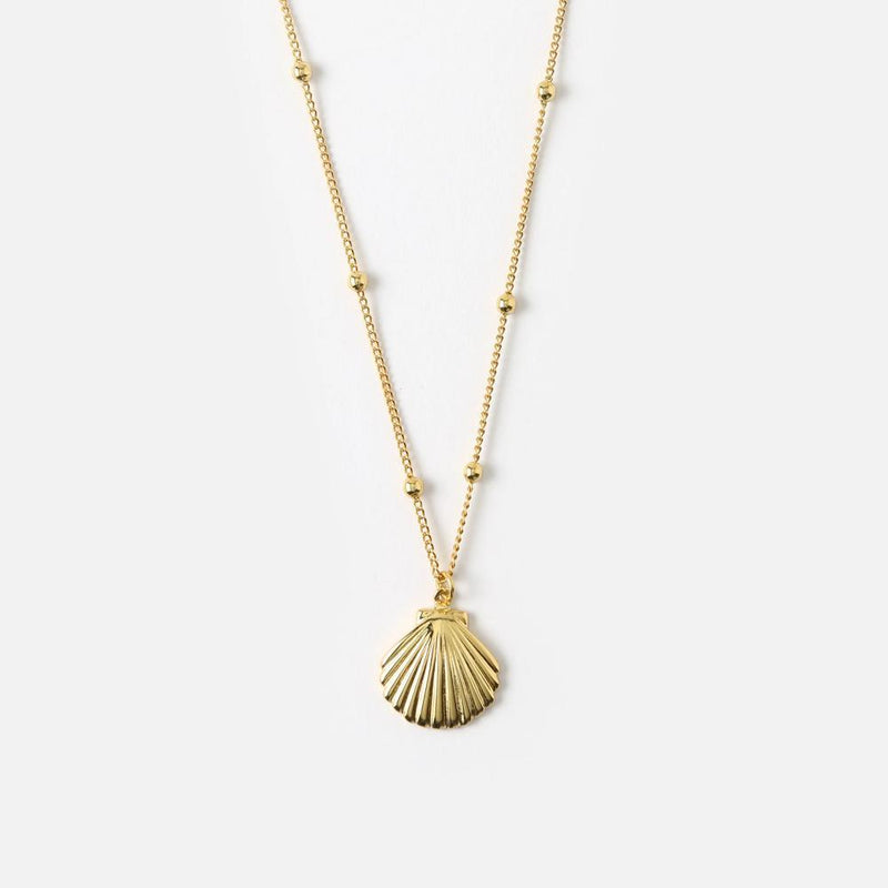 Orelia Metal Shell Satellite Chain Necklace