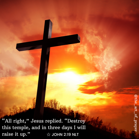Cross - Daily Devotional ~ The Temple