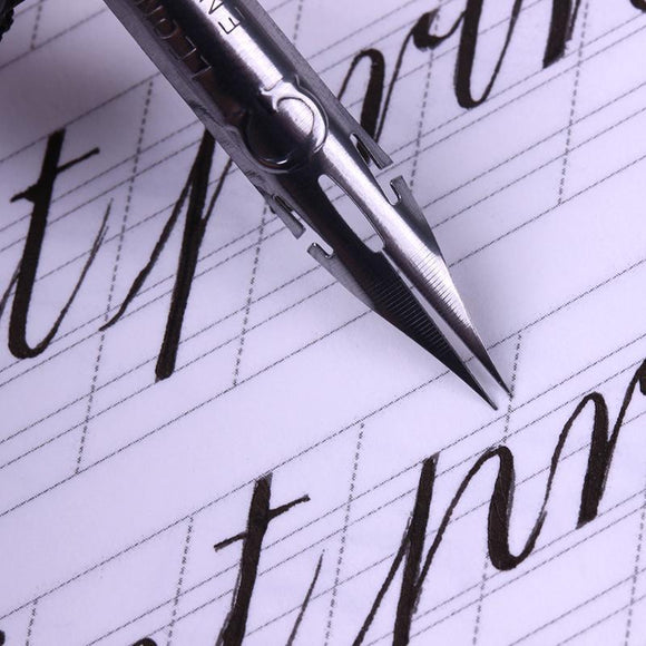 Flexy Nib Calligraphy Fountain Pen - The Stationery Booth