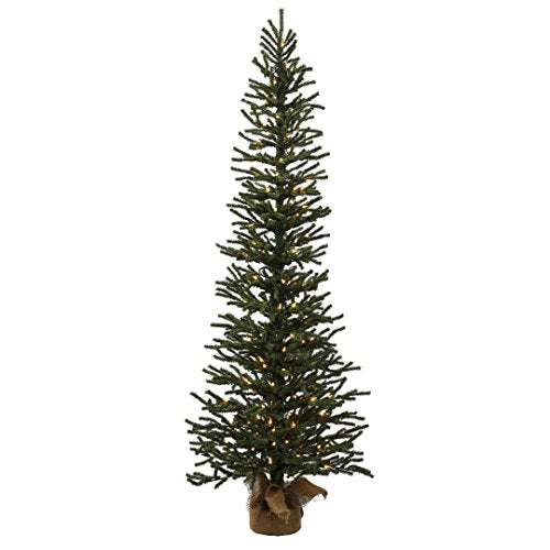 "Vickerman B166841LED Mini Pine Tree with 100 Dura-Lit Italian LED Lights, 4' x 16"", Warm White"