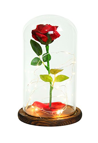 """Beauty and the Beast"" Everlasting Red Rose Flower Led Light with Fallen Petals in a Glass Dome on a Wooden Base"