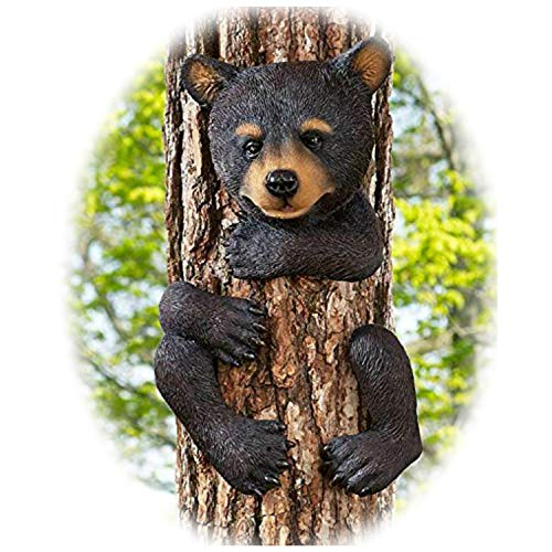 G Bear Tree Hugger