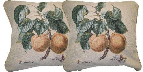Dada Bedding Dp-313 Apricot Woven Decorative Pillows, 18 By 18-Inch, Set Of 2