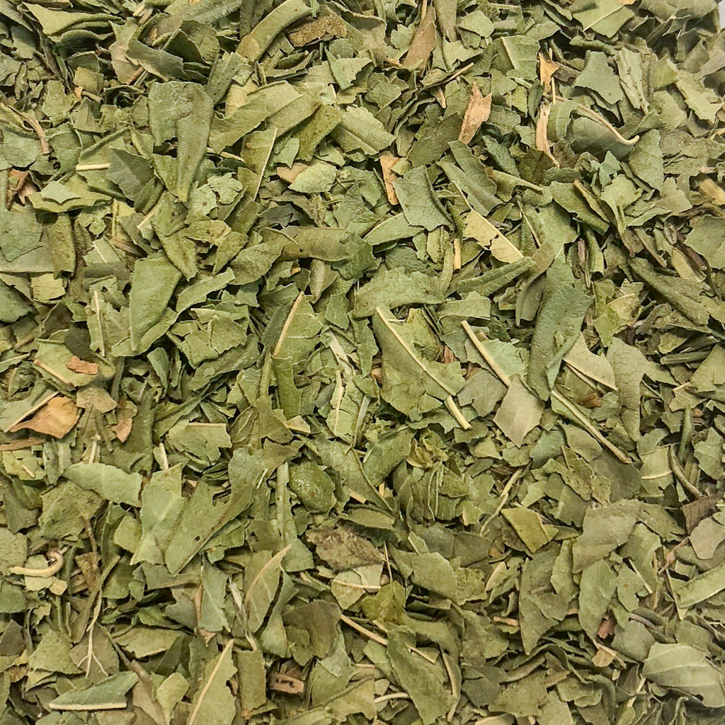 Lemon Verbena - Tea and Chi