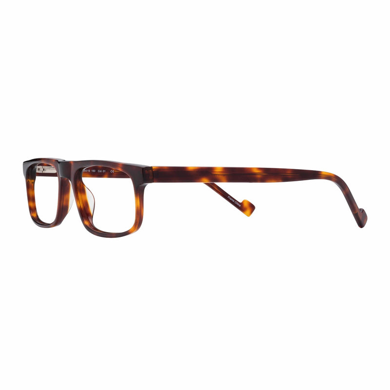 men's quality readers large size tortoise