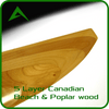 Vortexaero Layers HPR 125cm Wood Propeller