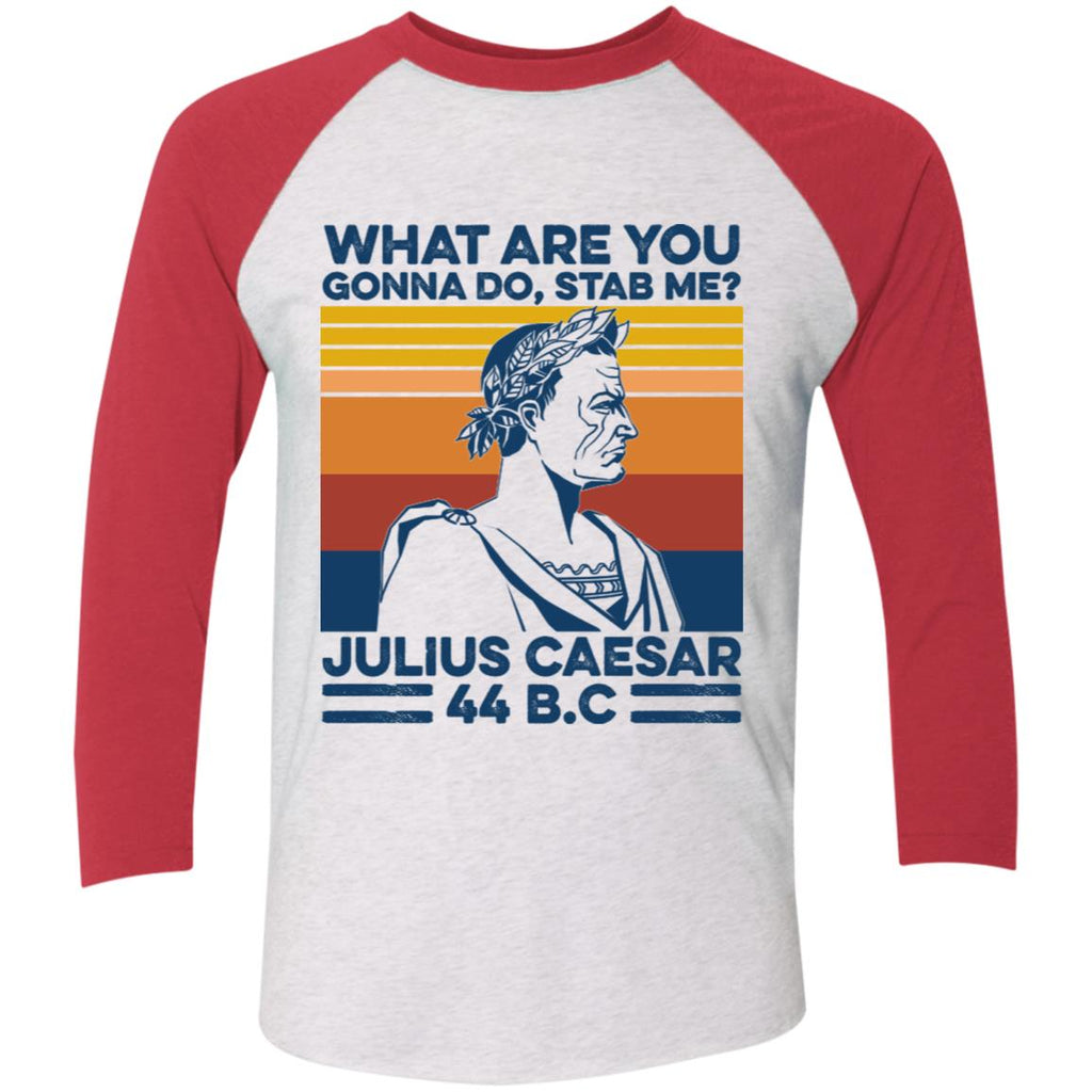 What Are You Gonna Do Stab Me Julius Caesar 44 BC shirts