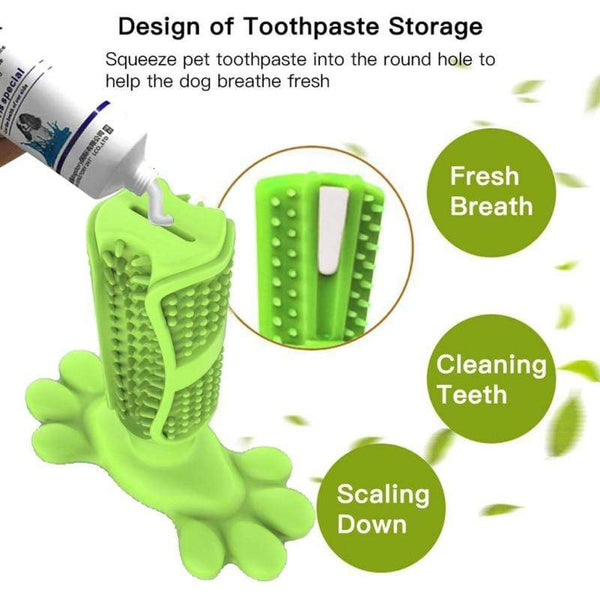 Petgear.co.nz Dog Toothbrush Chewing Dental Toy