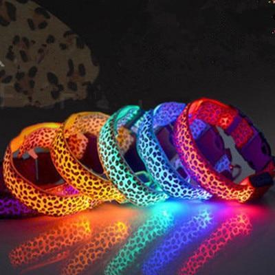 Petgear.co.nz Nylon LED Dog Collar Flashing Glowing