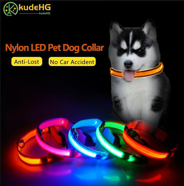 Petgear.co.nz Nylon LED Dog Collar Night Safety Flashing Glow In The Dark