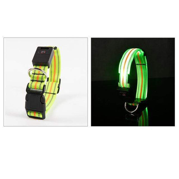 Petgear.co.nz Waterproof LED Dog Collar Original Magnetic Charging Glowing Collar