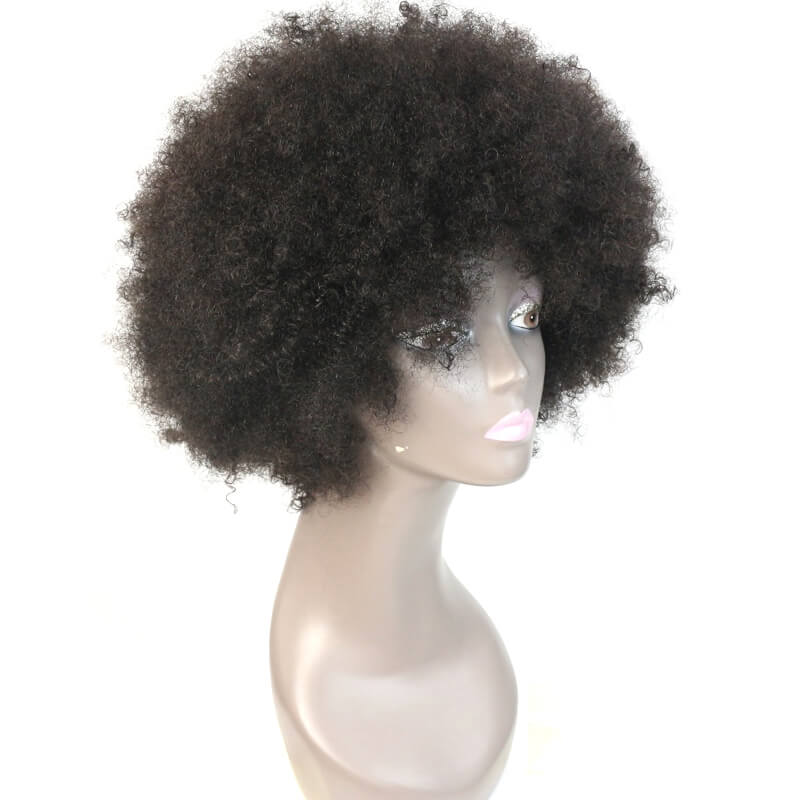 Msbeauty Natural Look Afro Curly Kinky Lace Front 100% Human Hair Wig - MSBEAUTY HAIR