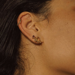 Aadar Earrings - Haati Chai