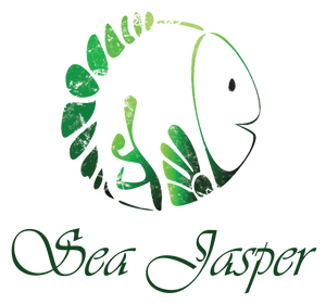 Sea Jasper the little fish that wanted to save its planet