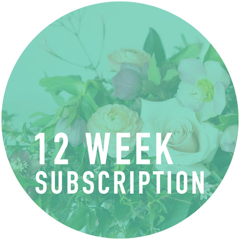 12 Week Arrangement Subscription