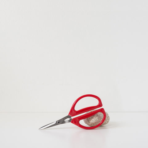 Joyce Chen Unlimited Scissors - Red