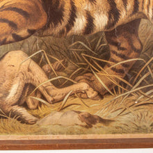 Load image into Gallery viewer, Early 20th Century Vintage Czechoslovakian Educational Chart - Tiger & Deer