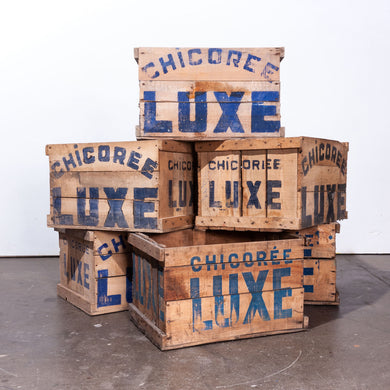 1940's Chicoree Luxe Decorative Storage Wooden Crate